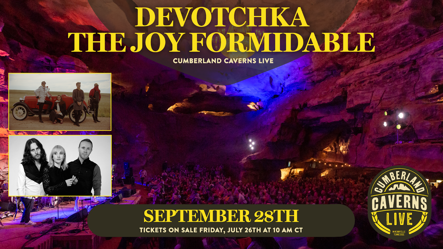 Devotchka The Joy Formidable Poster Lenz Designed