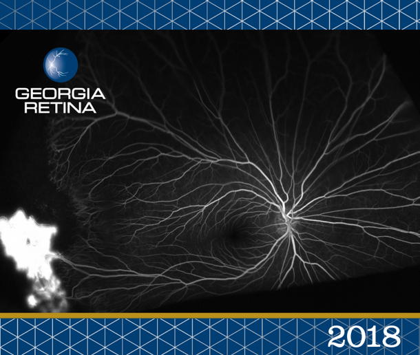 Example shot of the 2018 Georgia Retina calendar.
